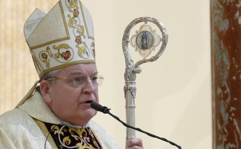 Cardinal Burke: Catholics have Our Lady of Guadalupe as mother, 'not Pachamama'